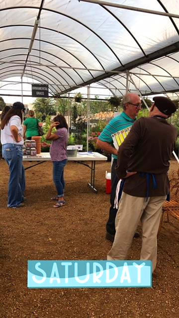Sharing tips about vegetable planting!