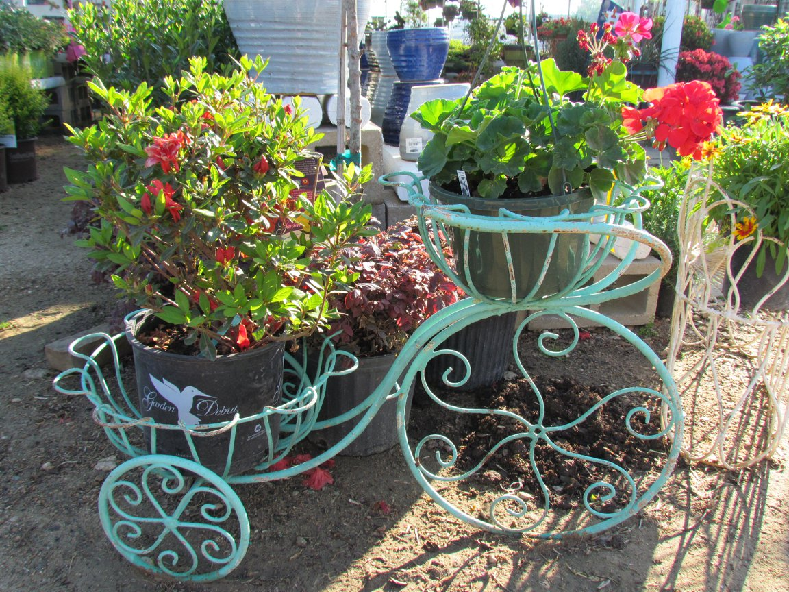 Beautiful Tricycles to display your plants.