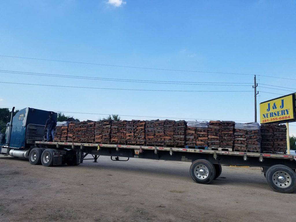 Mesquite firewood arrived this week at J&J Nursery, Spring, TX!