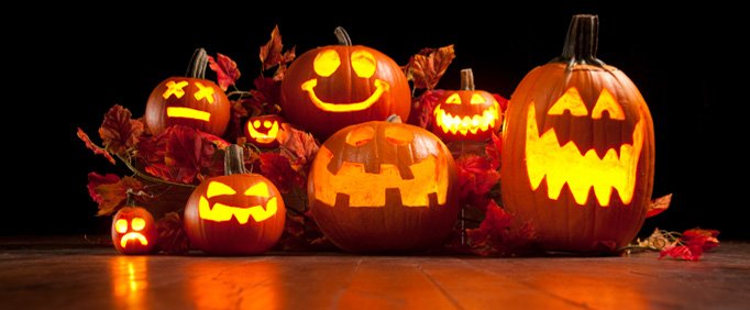 Carving pumpkins coming soon!