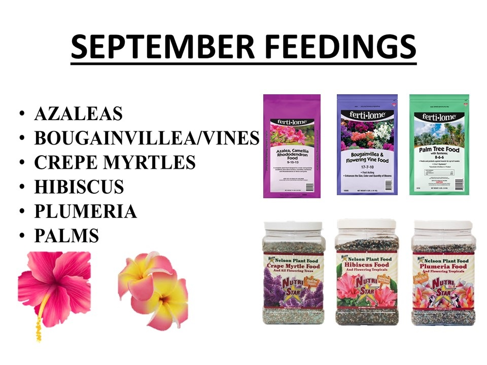 September fertilizer feedings for your plants!