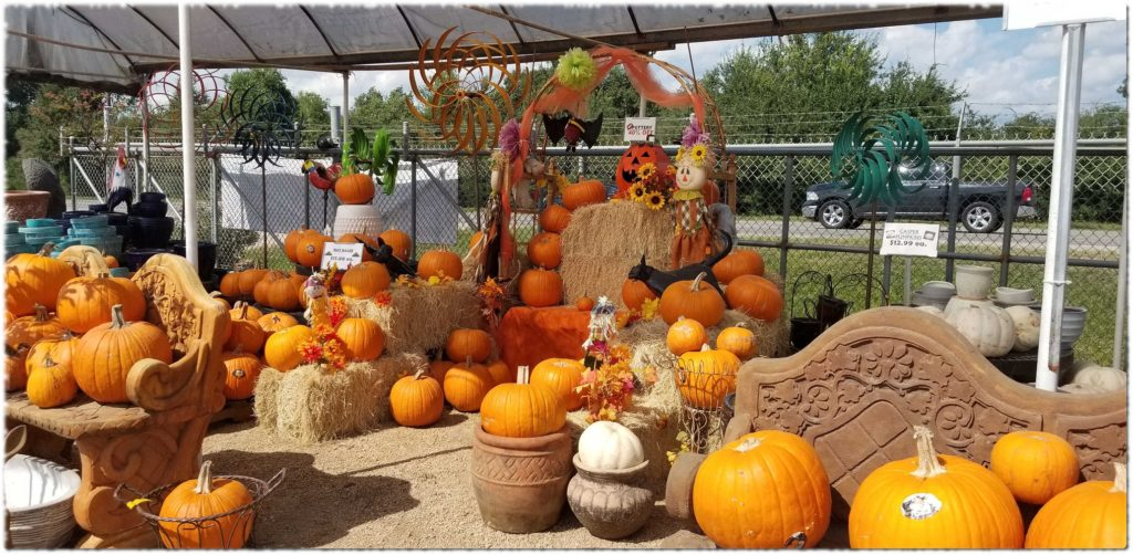 Pumpkins at J&J Nursery! We have regular, white and pie pumpkins and gourds. We also have hay bales!