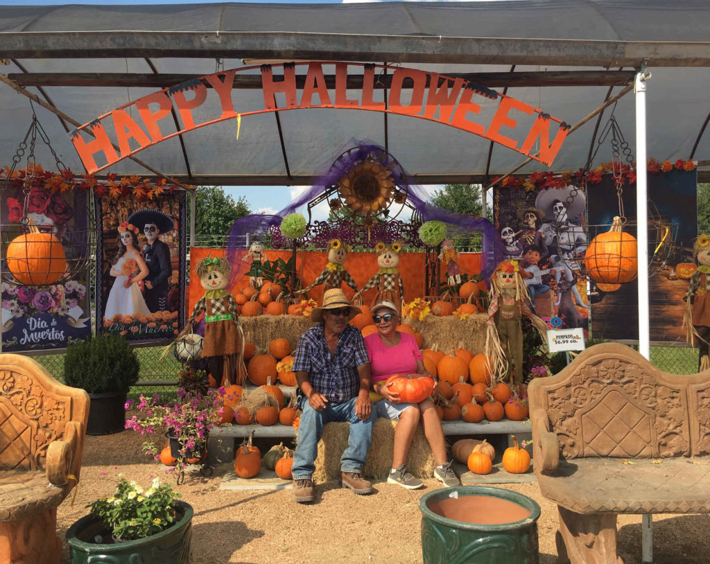 Pumpkins at J&J Nursery! Many kinds like fairy tale pumpkins, casper white pumpkins, mini pumpkins, and medium and large orange pumpkins!