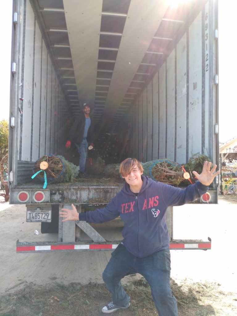 Almost unloaded all the Real Christmas Trees from the truck!