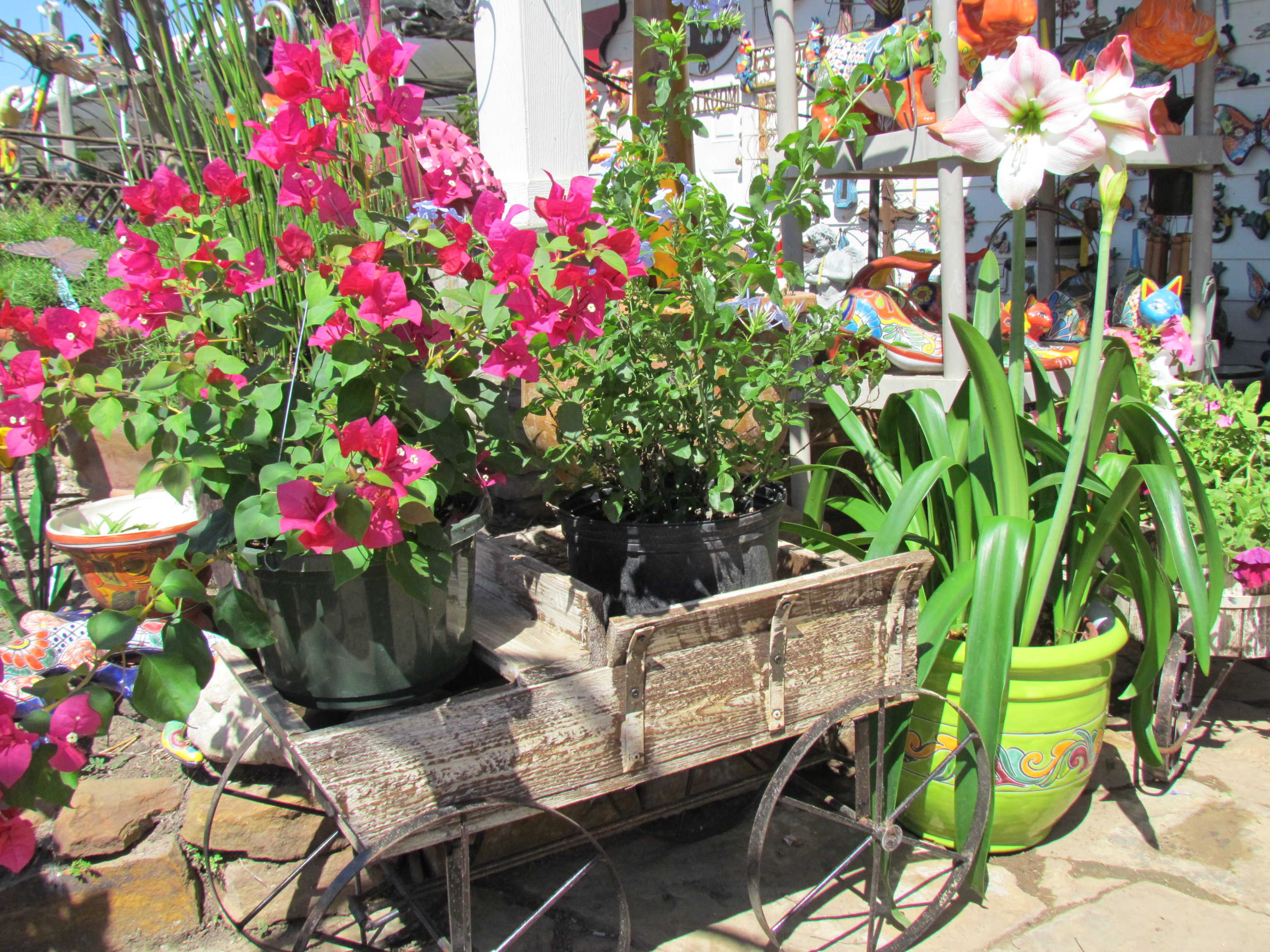 Wagon of flowers.