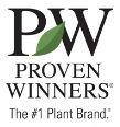 Proven Winners Plants at J&J Nursery, Spring, TX