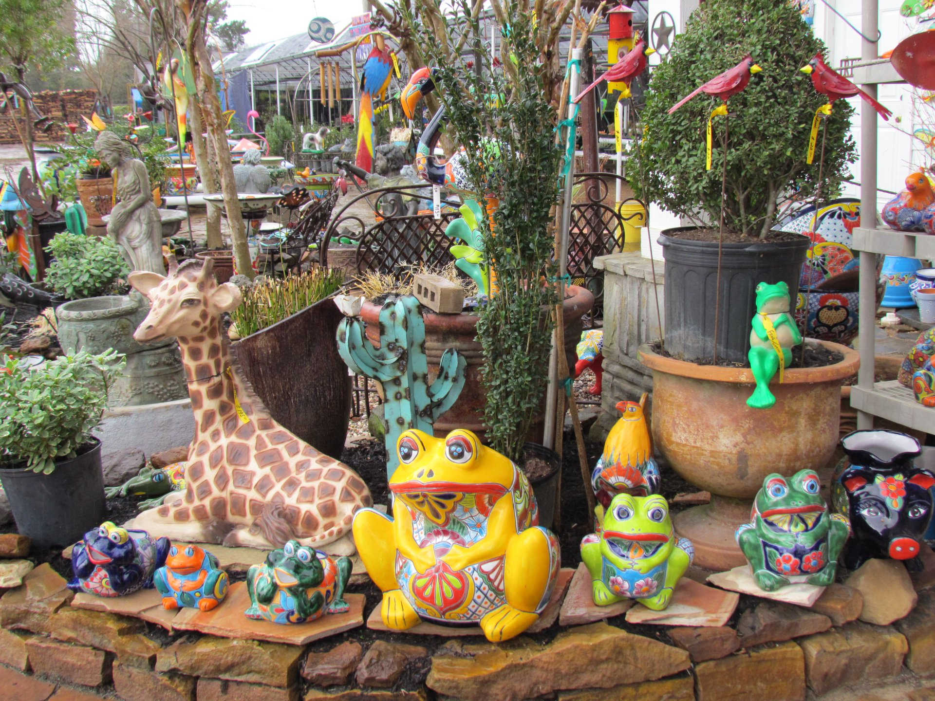 Talavera frog pottery at J&J Nursery, Spring, TX
